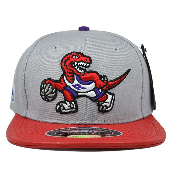retail prices where can i buy store Toronto Raptors Original Logo STRAPBACK Pro Standard NBA Hat - Hat ...